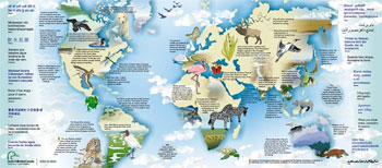 wetland of the world map to download